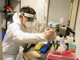 laboratorio thompson covid 19