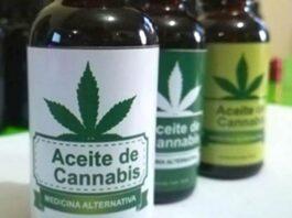 cannabis medicinal aceite